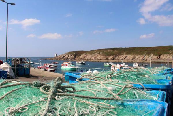 filets de pêche ramenés à terre