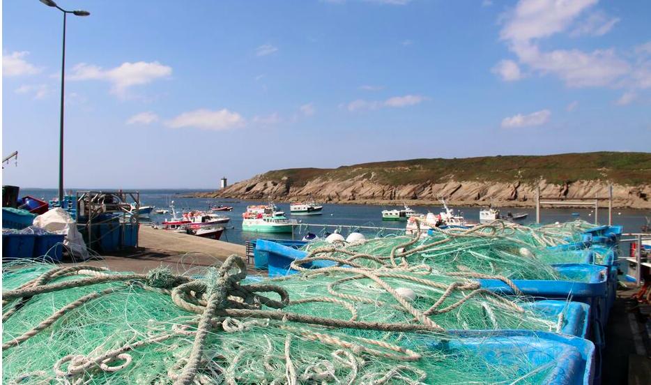 L'entreprise bretonne SEABIRD développe des filets biodégradables